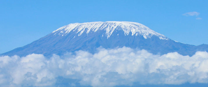shutterstock_60854839 Large adult elephant with a snow covered Mount Kilimanjaro in the background